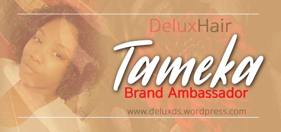 Tameka Promo banner